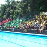 swim sport 2013